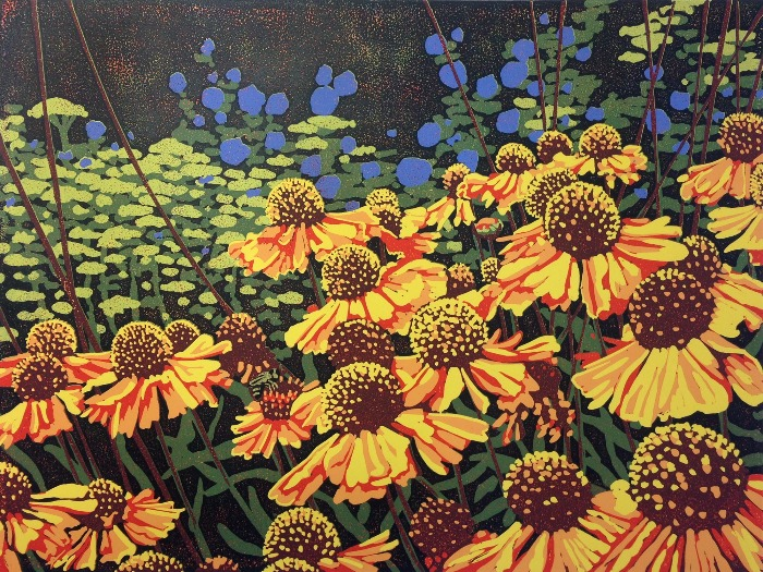 Daisy Delights by Alexandra Buckle