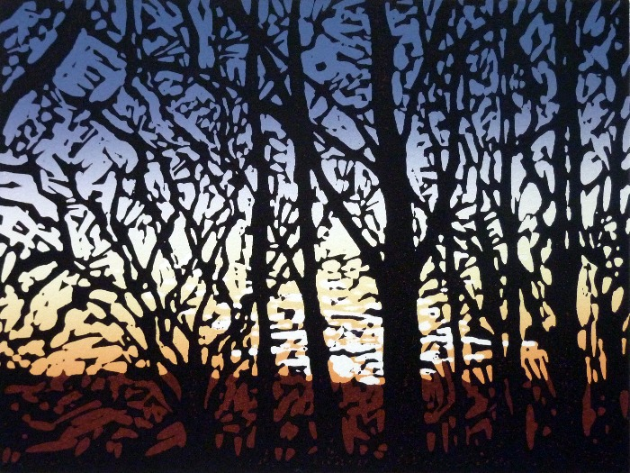 Stoke Wood Sunset by Alexandra Buckle