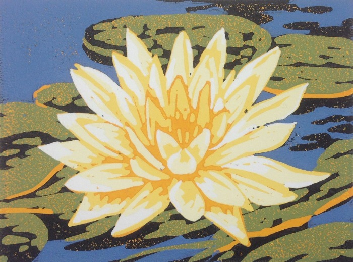 Waterlily by Alexandra Buckle