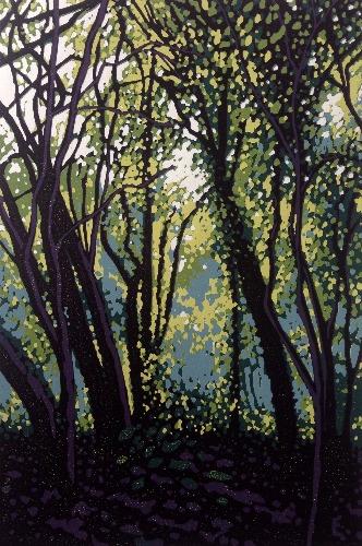 Woodland Haze by Alexandra Buckle