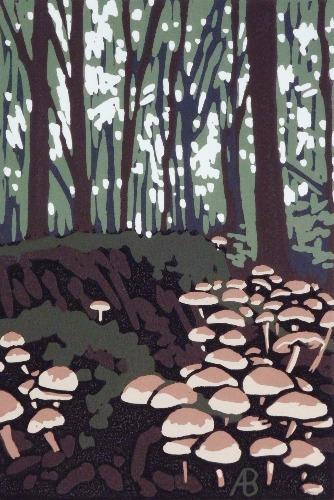 Stoke Wood Mushrooms by Alexandra Buckle