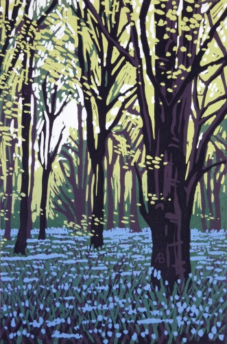 Stoke Wood Bluebells by Alexandra Buckle