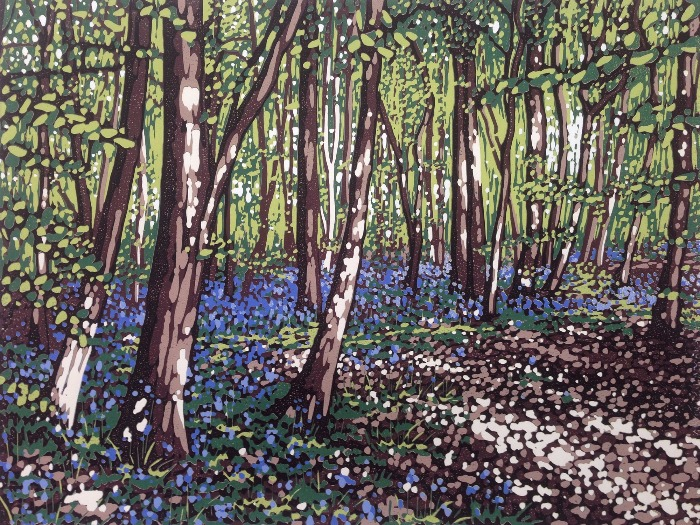 Bluebells and Sunlight by Alexandra Buckle