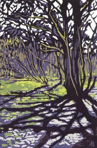 Tree Casts Shadow by Alexandra Buckle