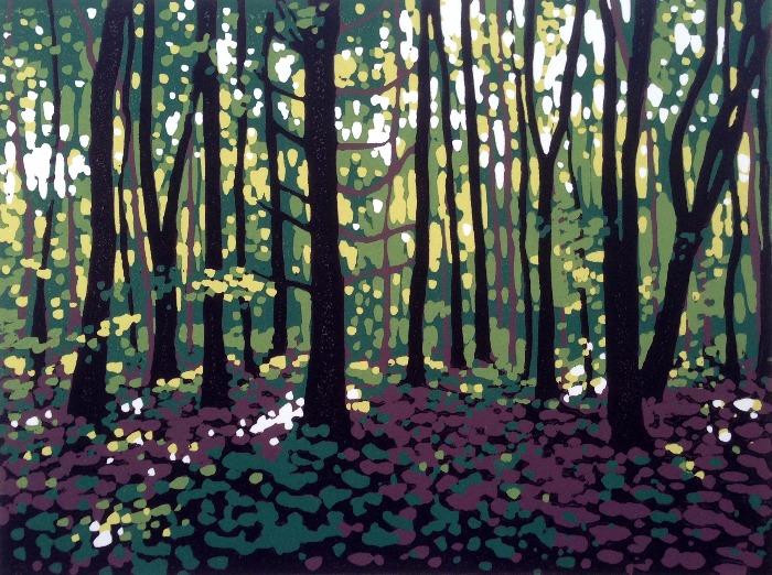 Summer Woodland by Alexandra Buckle