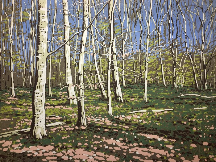 Beeches in Early Spring by Alexandra Buckle