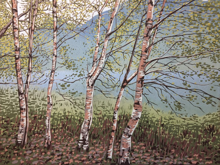 Grasmere Birches by Alexandra Buckle