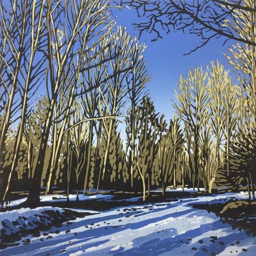 Woodland Snow by Alexandra Buckle